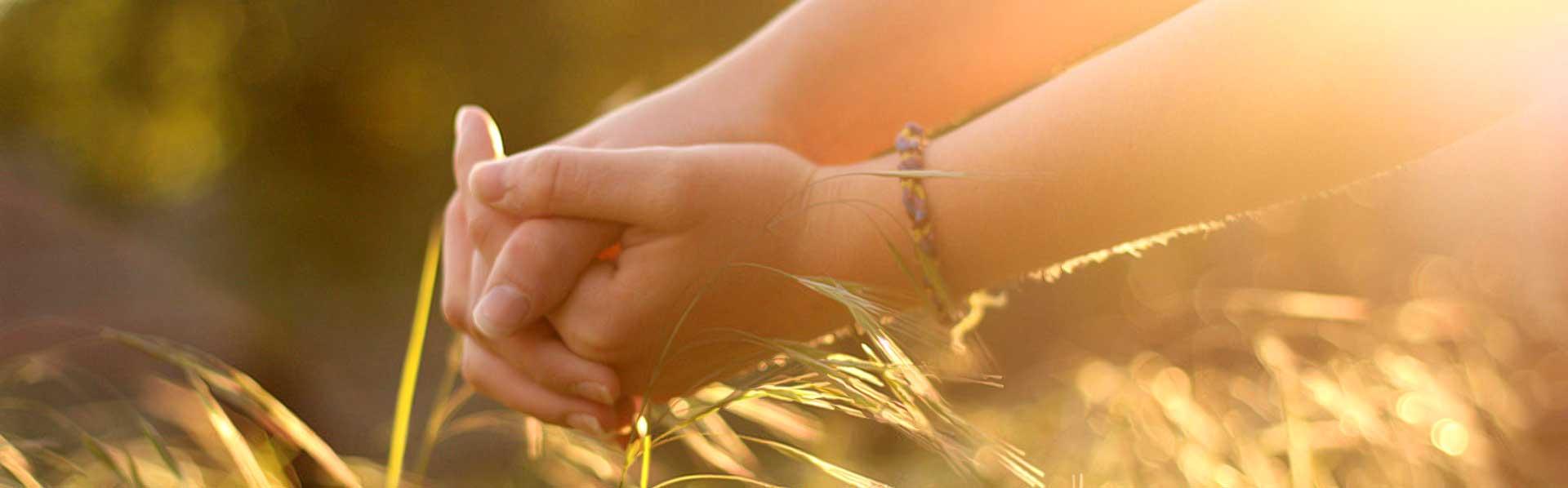 espiritismo-hands-divider